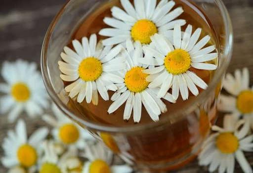 甘菊茶、蜂蜜和牛奶