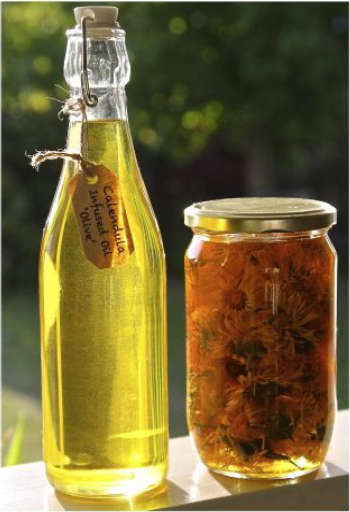 Calendula Oil, Olive Oil and Oregano Oil